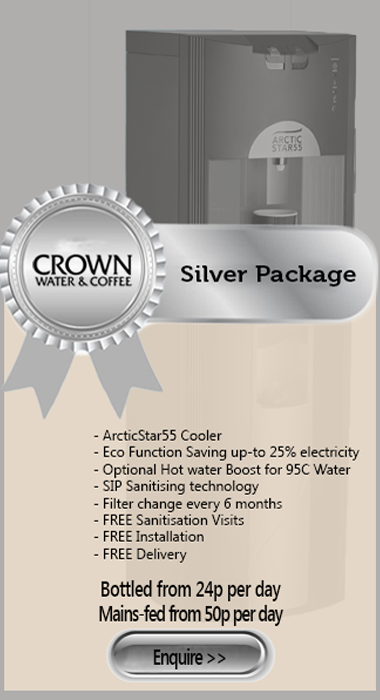 Webshop Silver package