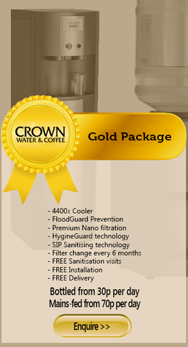 Webshop Gold package